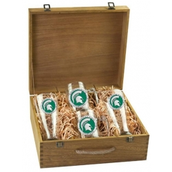 Michigan State University Beer Set w/ Box - Enameled