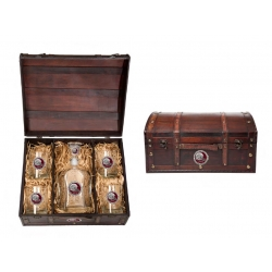 2013 BCS National Champions Florida State Seminoles Capitol Decanter Set w/ Chest - Enameled